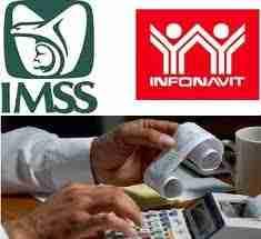 calculadora + imss e info
