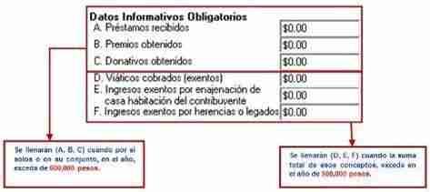 datos informativos obligatorios thumb Que necesita para elaborar la Declaracion Anual 2012 como Persona Fisica con Salario