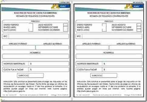 formato de pago repeco jalisco 2013